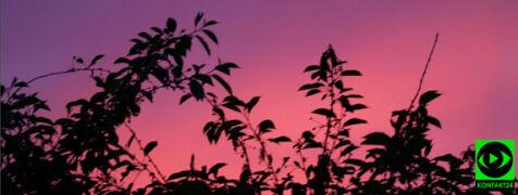Różowy zachód słońca, piękne widoki