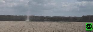 Diabełek pyłowy wirował w gminie Piaseczno