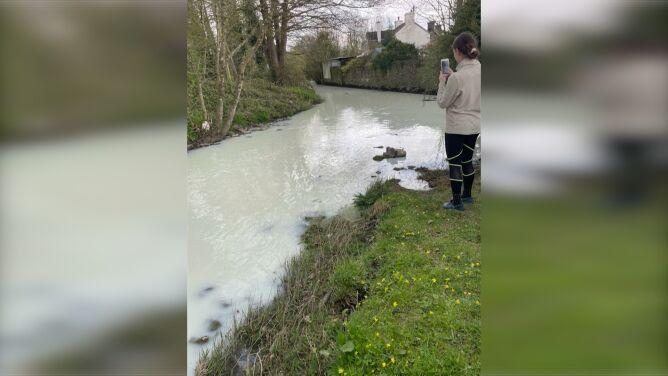 """""""Rzeka pełna mleka"""" popłynęła w Walii"""