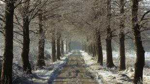 Prognoza pogody na dziś: nawet do 5 cm śniegu