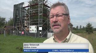 Najstarszy cis w Polsce opiera się fali upałów